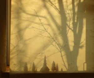 冬の午後の小窓シルエット